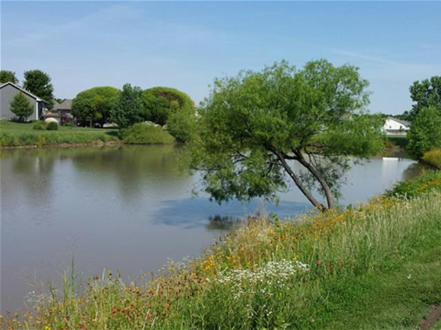 Arrowhead Park picture of pond with tree